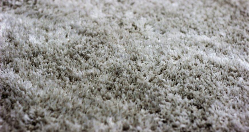 nettoyage tapis - bureaux et maison - Home Cleaning Services